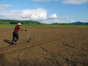 The author with a high-wheel cultivator - one of the challenges of small-scale agriculture