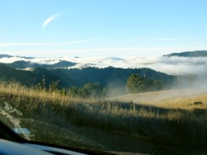 Fog on the hills above Garberville, California