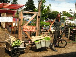 The author, in 2010, with a full load of produce. (Photo courtesy of Naomi's Organic Farm Supply)