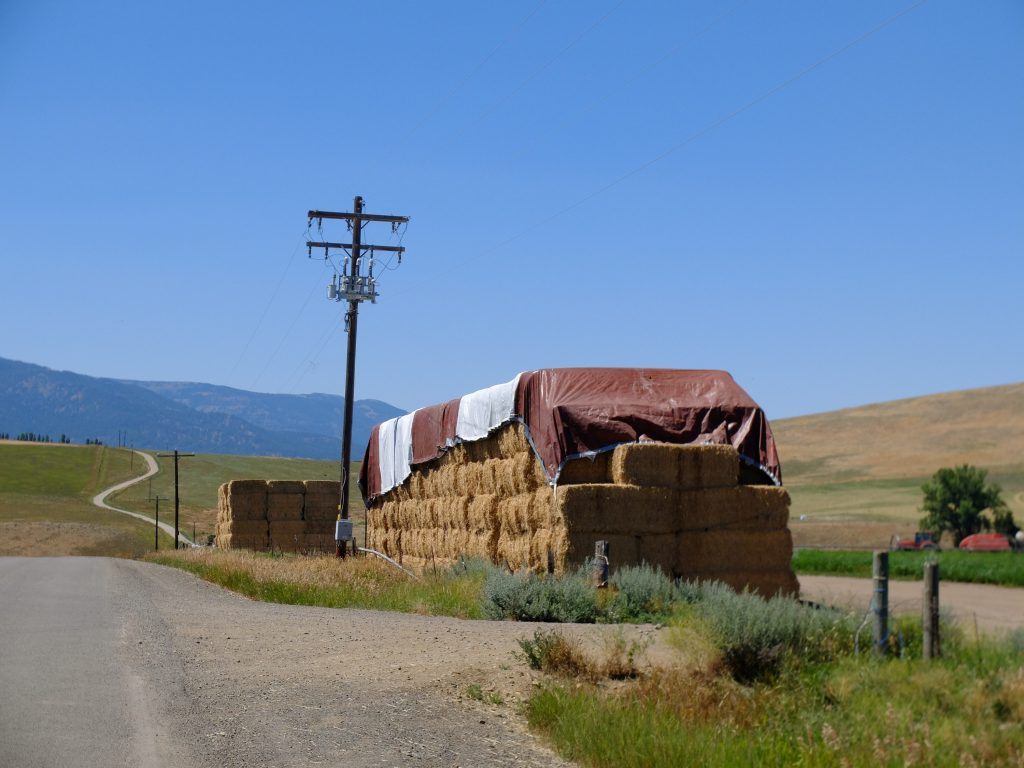 Hay bales stacked near Joseph. This sight is common throughout eastern Oregon.