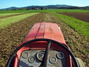 View from the tractor in the Willamette Valley - challenges to small-scale agriculture