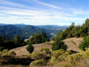 The hills above Garberville, California