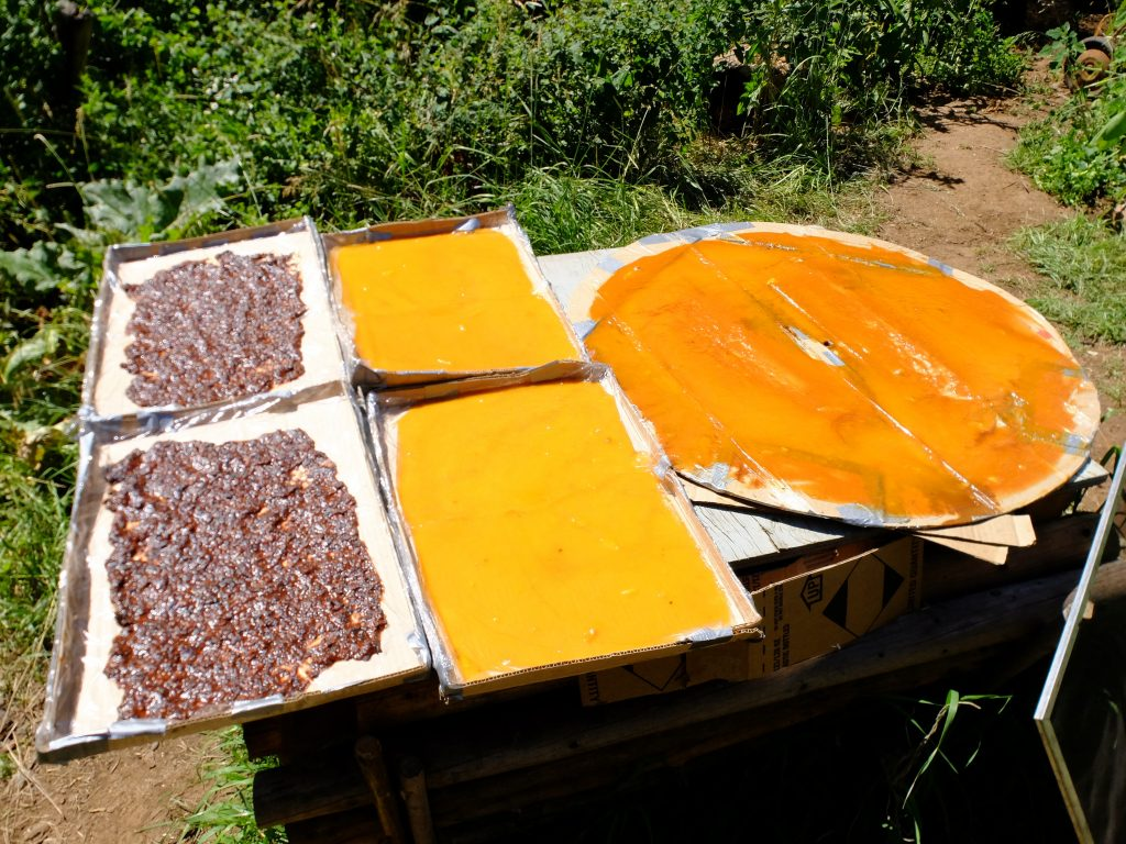 Fruit leather, sun-drying