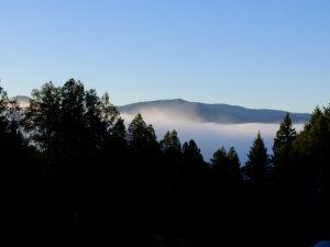 Humboldt hills in morning mist