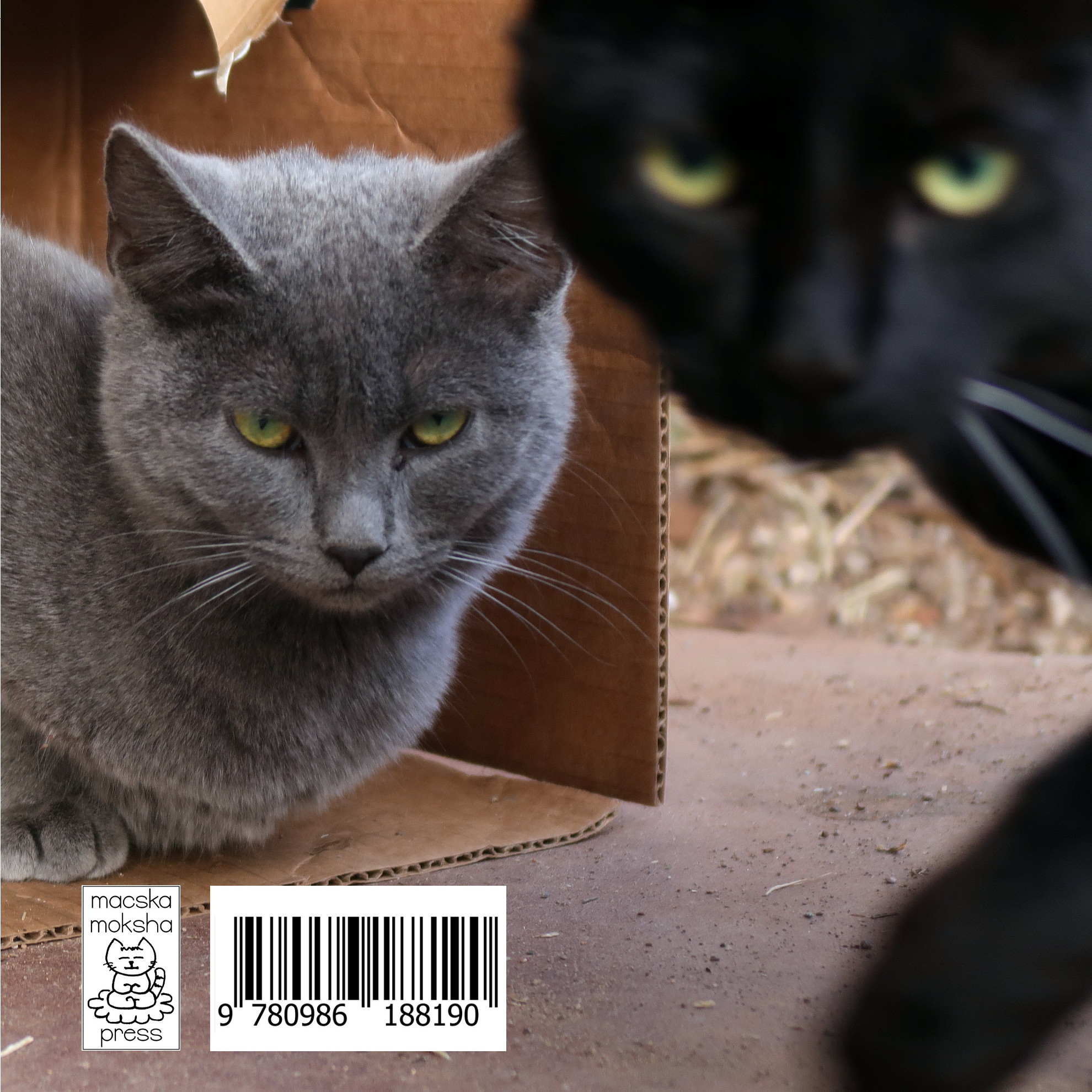 Never Trust Anyone Who Doesn't Like Cats - back cover