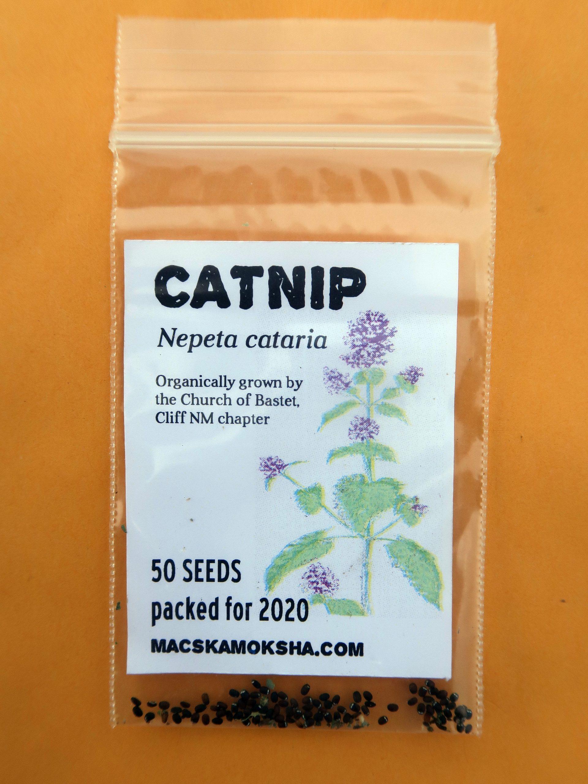 Catnip seed packet